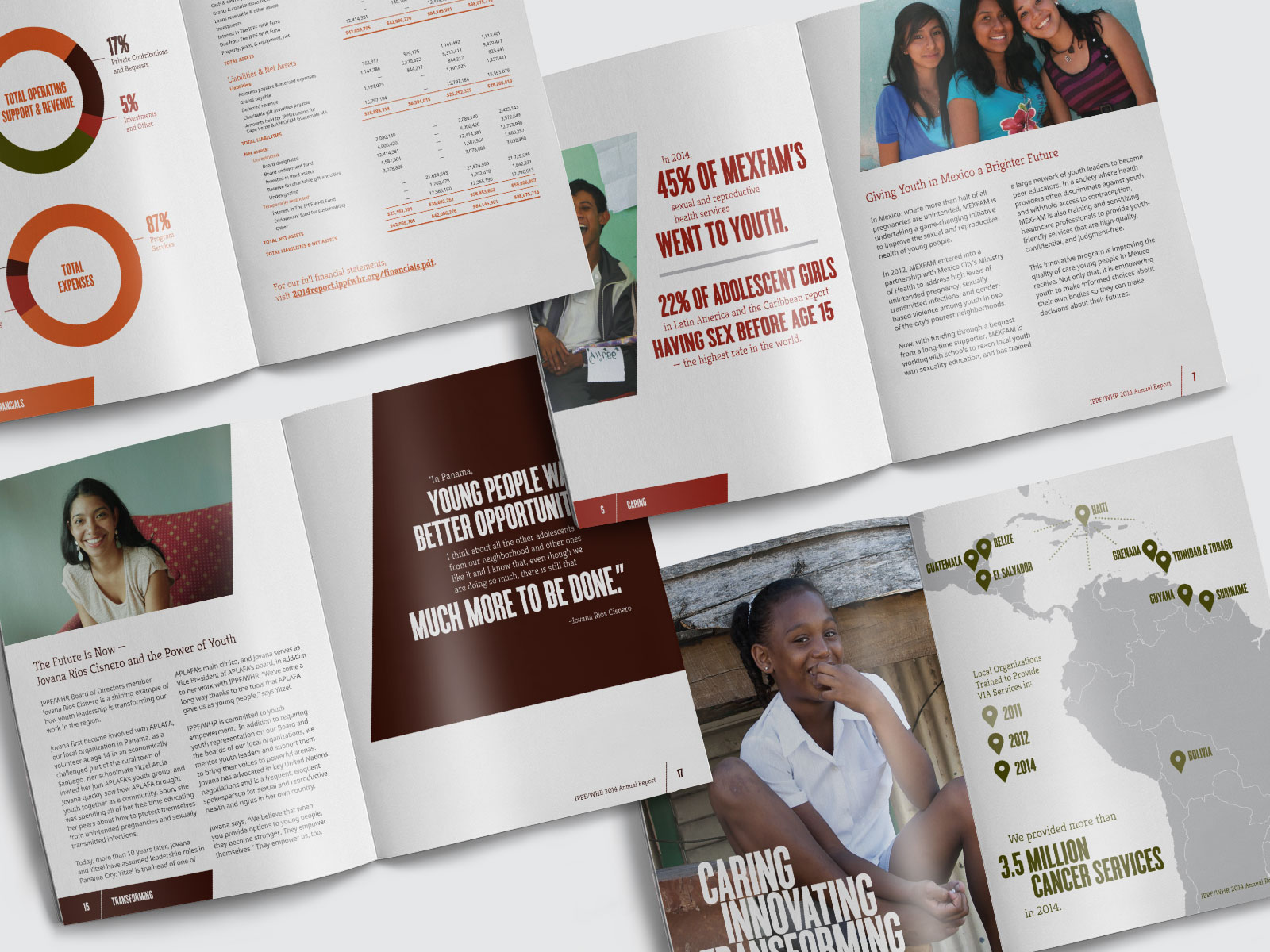 Image of work from the IPPF project.